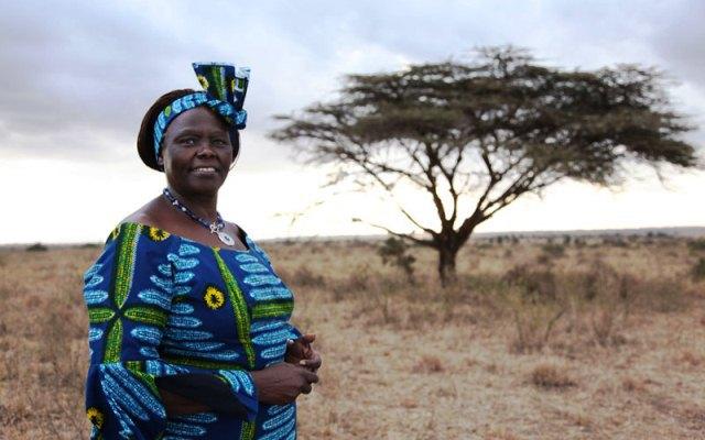 Azul-Ambientalistas-Wangari-Maathai