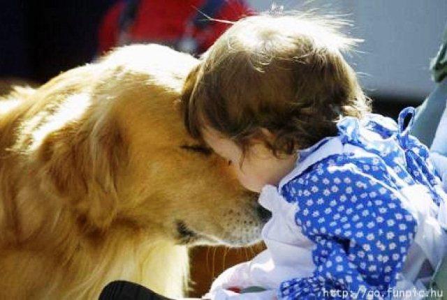 Azul-Ambientalistas-Niños-y-Mascotas