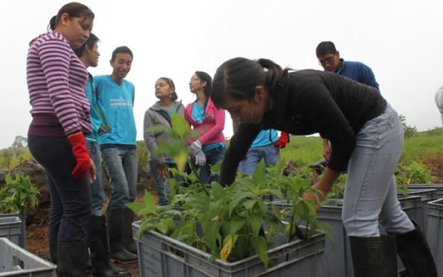 Azul-Ambientalistas-Biodiversidad-y-la-Gastronomia-Venezolana-02