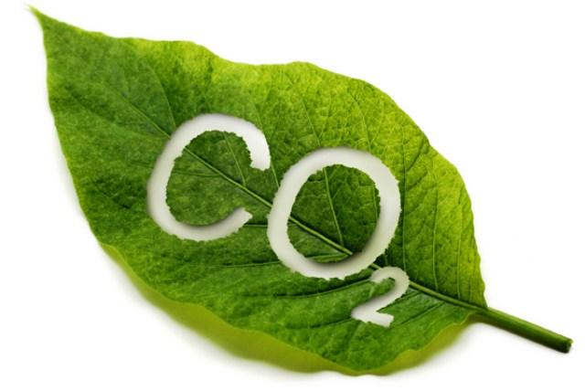 Azul-Ambientalistas-Tecnologias-para-Eliminar-el-CO2