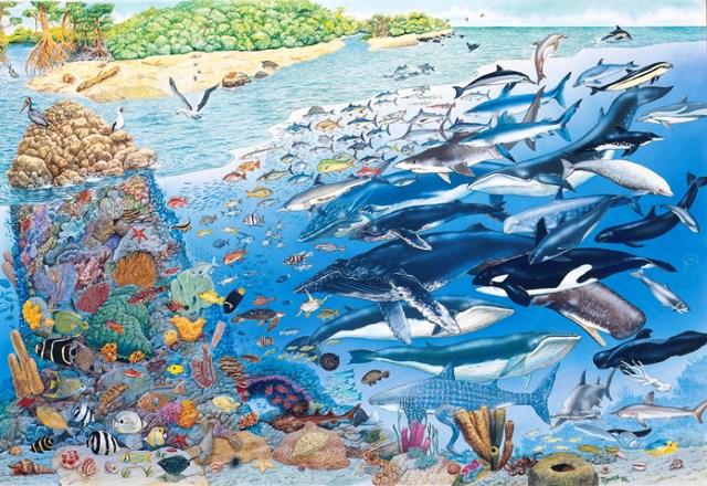 Azul-Ambientalistas-Diez-propuestas-para-la-salvaguarda-de-los-oceanos