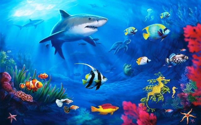 Azul-Ambientalistas-La-Magia-de-los-Oceanos-02