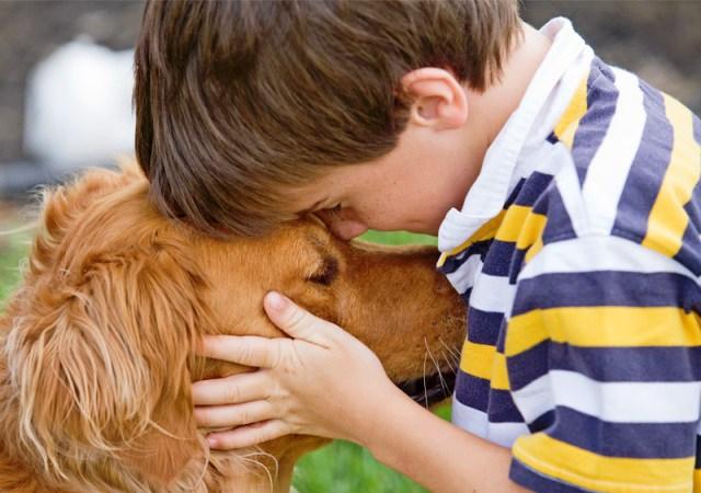 Azul-Ambientalistas-Como-educar-a-un-perro-a-relacionarse-con-ninos
