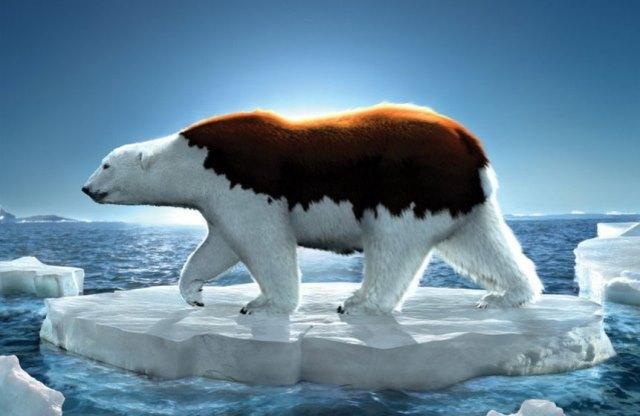 Azul-Ambientalistas-impactos-negativos-que-causa-el-cambio-climatico-en-los-a