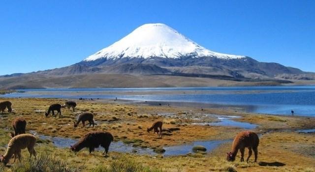 Azul-Ambientalistas-Volcanes-ayudarian-frenar-cambio-climatico