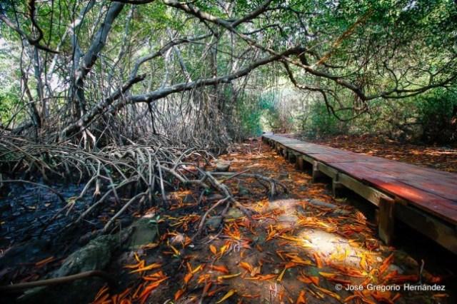 Tierra-de-Suenos-el-Primer-Parque-Ecoturistico-del-Zulia-esta-de-Aniversario-001