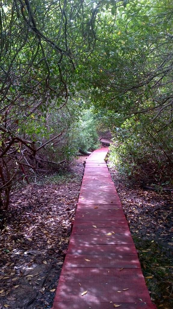 Tierra-de-Suenos-el-Primer-Parque-Ecoturistico-del-Zulia-esta-de-Aniversario-004