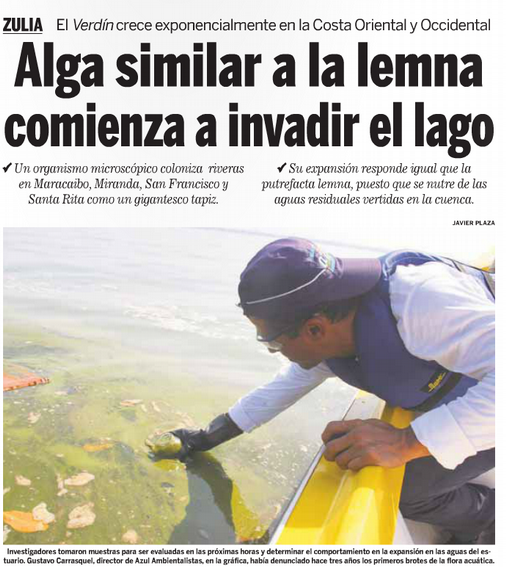 2015-09-28-Version-Final-Alga-similar-a-la-lemna-comienza-a-invadir-el-lago-01