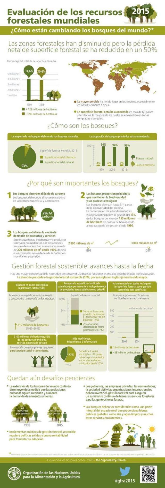 001-Evaluacion-de-los-recursos-forestales-mundiales-2015