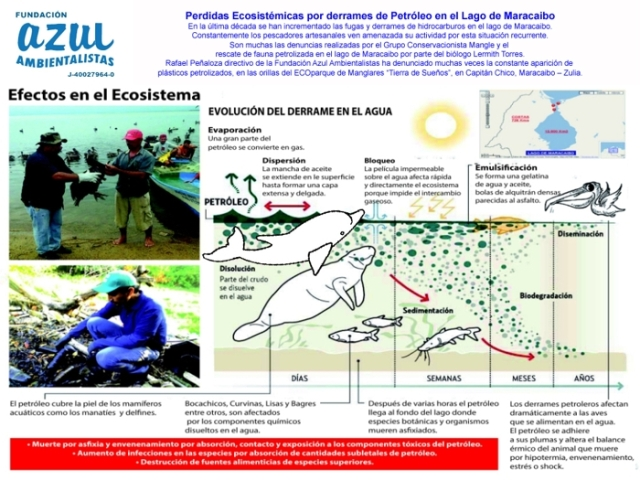 Infografia sobre petroleo en el lago 2016-2