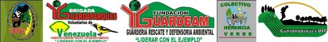 azul-ambientalistas-los-guardaparques-voluntarios-requieren-apoyo-del-estado-venezolano-02