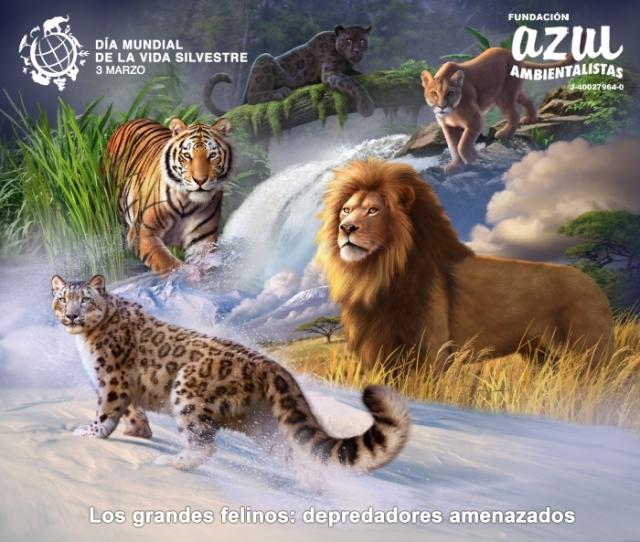 Día Mundial de la Vida Silvestre 2018: «Grandes felinos, predadores amenazados»