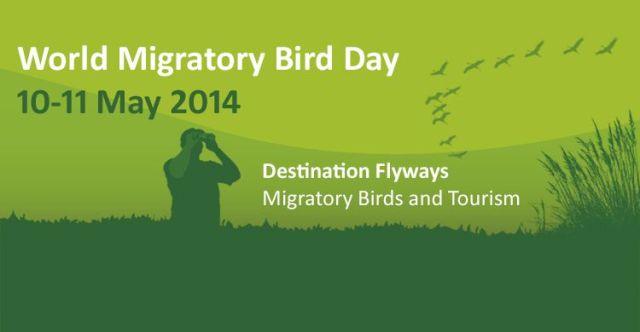 """Día Mundial de las Aves Migratorias 2014: """"Destino Rutas Aéreas: Aves Migratorias y Turismo"""""""