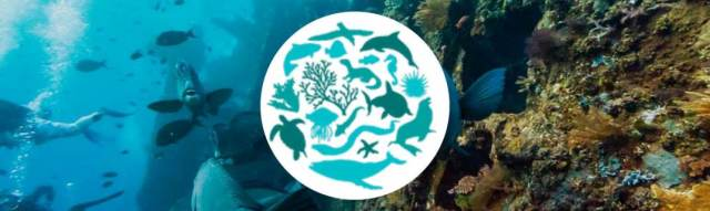 """Día Internacional de la Diversidad Biológica 2012: """"La Diversidad Biológica Marina"""""""