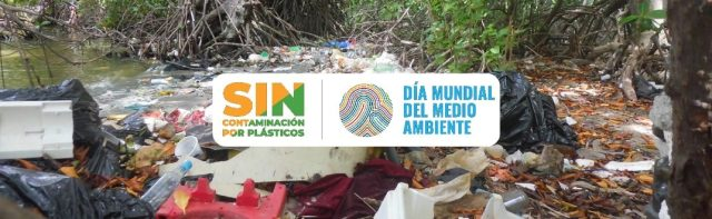 """Día Mundial del Medio Ambiente 2018: """"#SinContaminación por plásticos"""""""