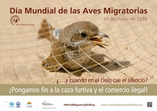 """Día Mundial de las Aves Migratorias 2016: """"¡Pongamos fin a la caza furtiva y el comercio ilegal!"""""""