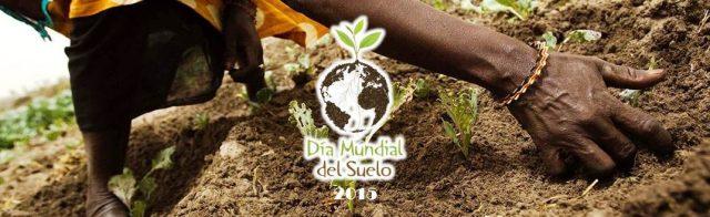 Día Mundial del Suelo 2015: «Los Suelos, una base sólida para la vida»