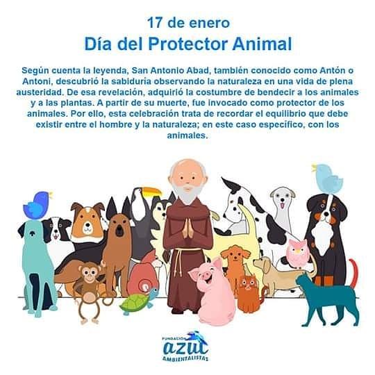 17 de Enero: Día del Protector Animal