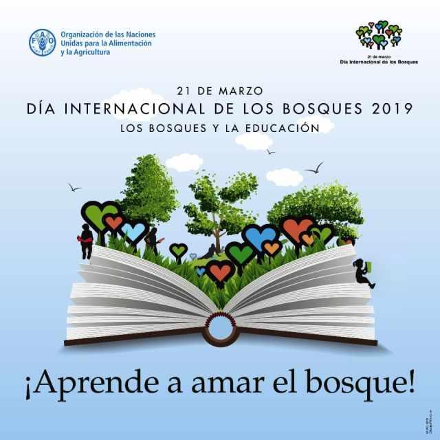 Día Internacional de los Bosques 2019 - Los Bosques y la Educación